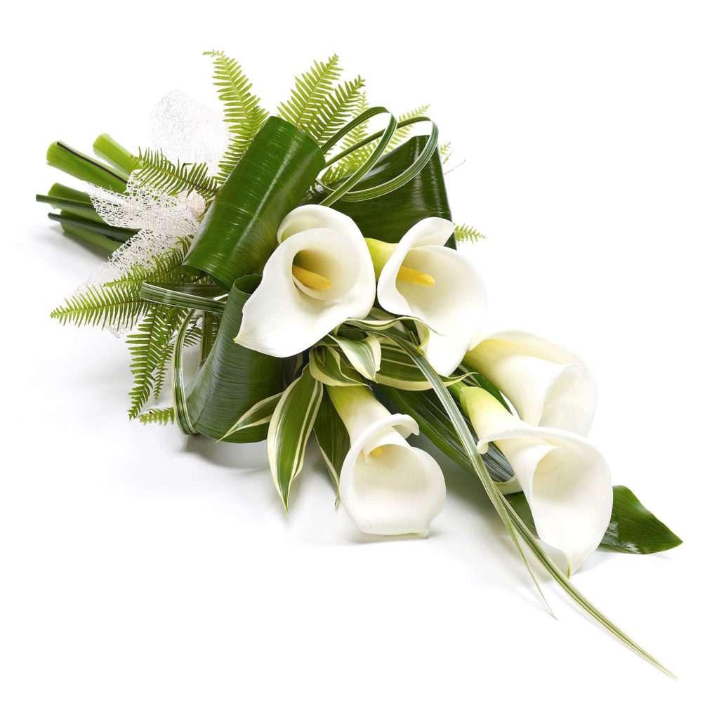 lilies-2-1024x998